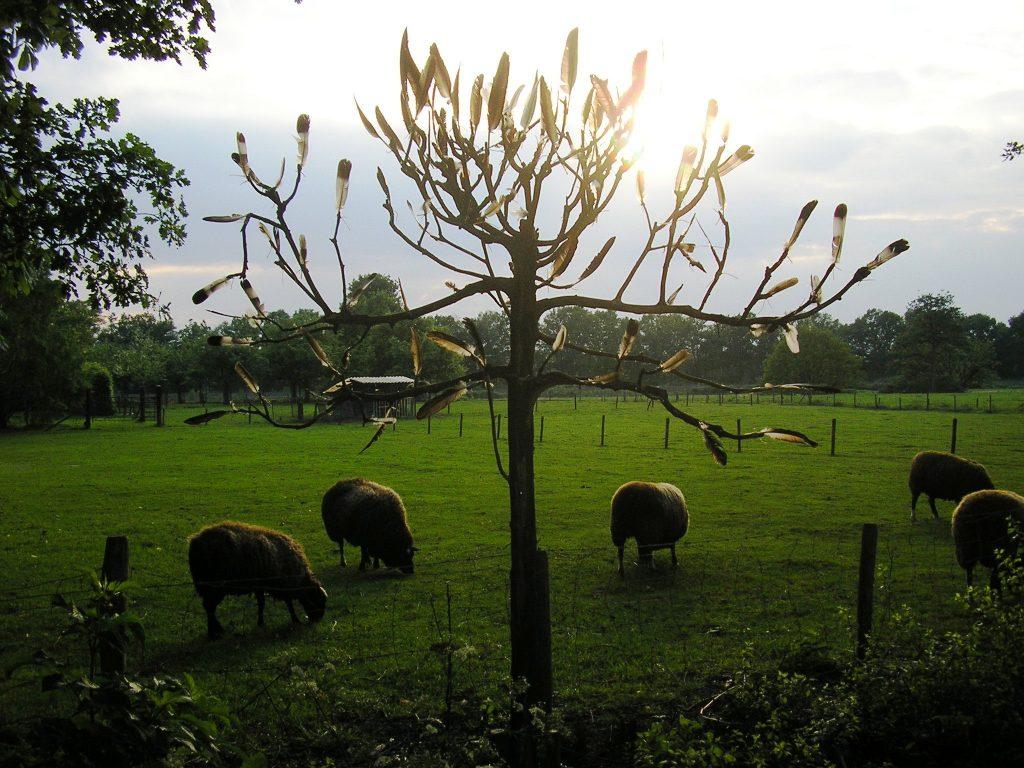 4-op-de-grens-van-novum-vita-smakt-holthees-2007